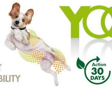 FREE Yoos Essential Oils Dog Collar